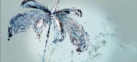 flowers-ice